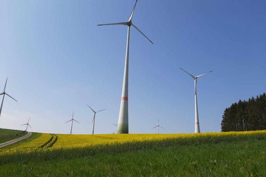 Beispielbild Klimaschutz: Windräder im Paderborner Land